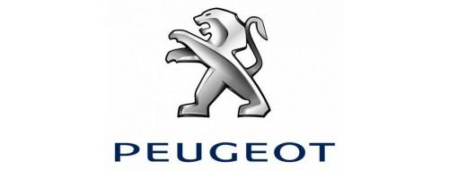 Купить запчасти для корейских автомобилей Peugeot в Челябинск дешево в наличии и под заказ.