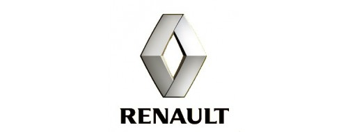 Купить запчасти для французских автомобилей Renault Рено в Челябинск дешево в наличии и под заказ.